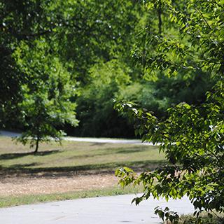 Coombs Creek Trail